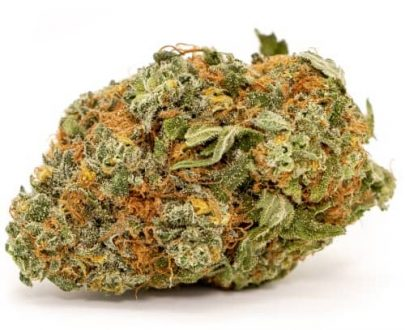 green gum cbd hemp flower