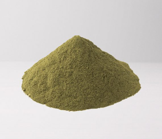Green Sumatra - The Golden Monk
