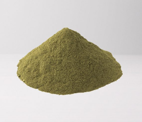 Green Vein Bornea Powder