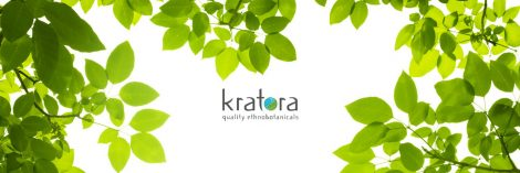 BuyKratom.us Kratora Review