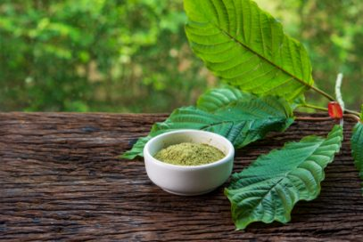 kratom leaves and bowl of ground kratom powder from best online kratom powder vendor