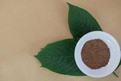 Kratom powder and leaves