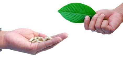 Kratom capsules and leaf