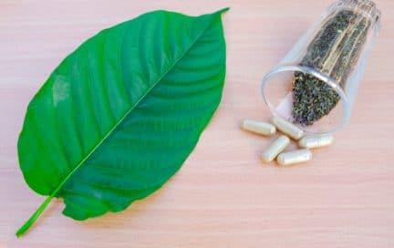 Kratom leaf capsules crushed leaf