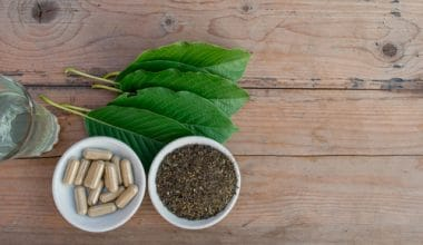 Kratom leaves, loose leaf, and capsules