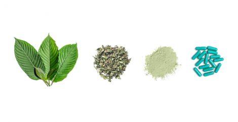 Stan David Botanicals Kratom Vendor Review