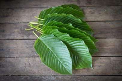 Kratom leaves on a weathered wood background