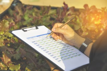 Quality control being monitored in vegetation being grown person has clipboard with form and and pencil