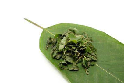 Kratom leaf and crushed leaves